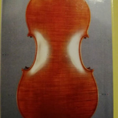 Wonderful Modern Cello with Whole Back.  Modello Stradivari, pic 2