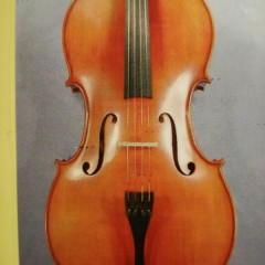 Wonderful Modern Cello with Whole Back.  Modello Stradivari, pic 1
