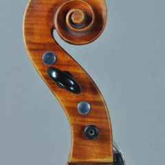 Rare and interesting viennese cello, pic 3