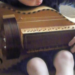 Hurdy Gurdy, flat back with guitar-shaped body made by Richard Smith, in black coffin-shaped case, pic 2