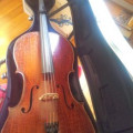 Scaranpella signed 'cello 1882, very distinctive wide cracked varnish with a relief effect