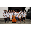 Double Bass Camp with Prof. Jeff Bradetich & Dominik Wagner