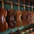 Allen Violins And bows