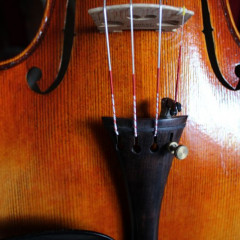 Violin 4/4, bow, case and rosin (unbranded) new., pic 2