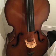 Hungarian student Double Bass, pic 2