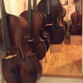 The cello room