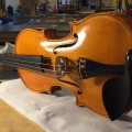 Italian luthier, violin 4/4 handmade maked in 2019 in Turin