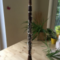 Rosewood Clarinet incl. olive wood moutpiece from Thomas Andreatta