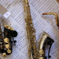 Yanagisawa TWO37 Tenor Saxophone  - Solid Silver  -  **Played by Snake Davis!**
