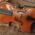 Brazilian Violin Stolen At the Central Station of Prague