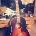 Gibson Southern Jumbo Animal Custom Acoustic Guitar
