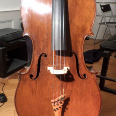 Fantastic cello possibly italian ca. 1820, pic 1