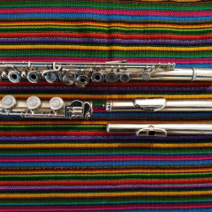 Webb and Wessel flute and headjoint / Goosman headjoint, pic 1