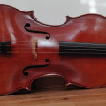 Beautiful American Cello