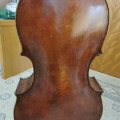 Modern Forster copy cello. 21 years old