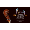 """Vienna Classic Strings"" International Competition and Festival"