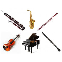 Courses for Instrumentalists Spazio Musica July-August 2019