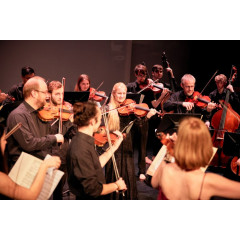 Applications now open!! 2 yr Masters with Irish Chamber Orchestra