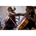 Nantwen Cello Course