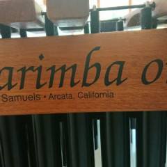 Marimba One in perfect condition, plus cases, pic 3