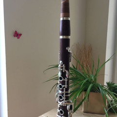 Rosewood Clarinet incl. olive wood moutpiece from Thomas Andreatta, pic 3