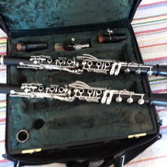 Wolfgang Dietz Reform Boehm Clarinets Set A & Bb Model 585, pic 3