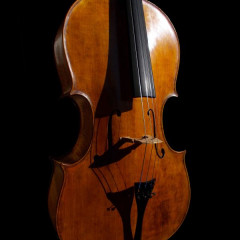 Montagnana model 4/4 cello, pic 3