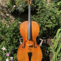 Gewa Berlin Antik Cello 4/4