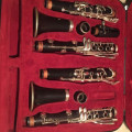Buffet R13 Vintage - Bb and A clarinets