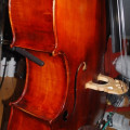 Beautiful orchestra bass with C extension