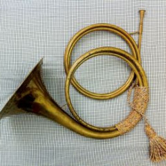 Baroque Horn made by Andreas Jungwirth (2001), model Leichambschneider, with 2 crooks (F & G), pic 1