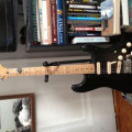 "Fender Mexican ""David Gilmour"" Strat"