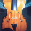 Stolen violin with 2 bows in shaped violin case in TGV at Gare De l'Est Paris on 20 July 2013