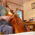 glaesal cello